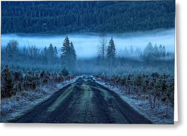 Eerie Greeting Cards - Blue and foggy and moody Greeting Card by Lynn Hopwood