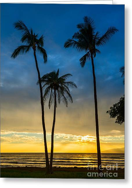 Coconut Palm Tree Greeting Cards - Blue and Gold Greeting Card by Jamie Pham