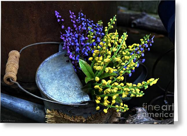 Shed Photographs Greeting Cards - Blue and Yellow Flowers Greeting Card by Mary Machare