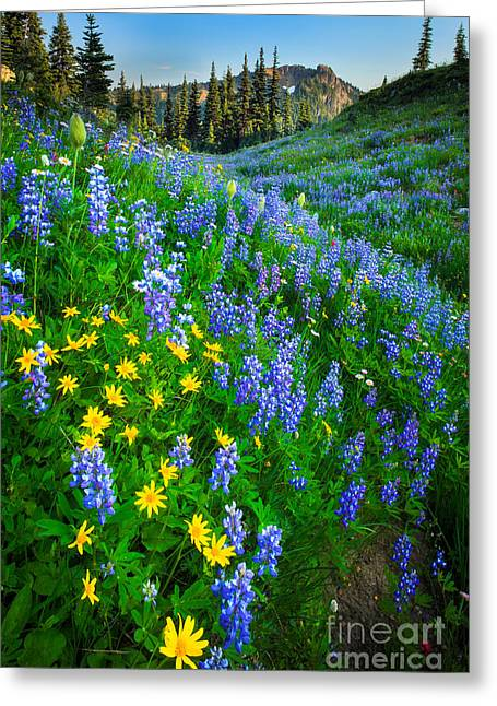 Green Hills Greeting Cards - Blue and Yellow Hillside Greeting Card by Inge Johnsson