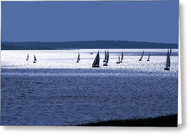 Sailing Digital Greeting Cards - The Blue Armada Greeting Card by Douglas Pittman