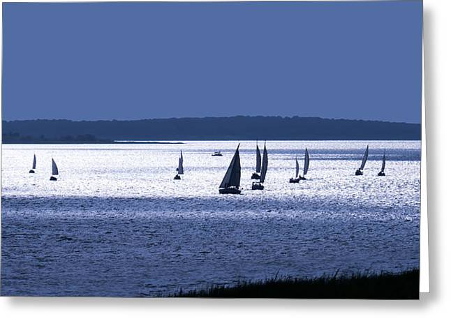 Blue Sailboat Greeting Cards - Blue Armada II Greeting Card by Douglas Pittman