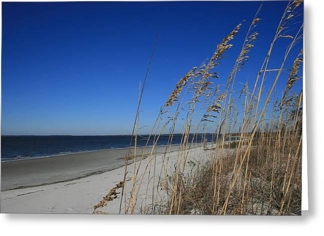 Blue Beach Greeting Card by Barbara Kraus - Northrup