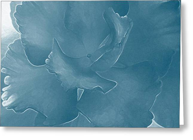 Blue Begonia Greeting Card by Jo-Anna Pippen