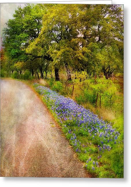 Joan Bertucci Greeting Cards - Blue Bonnet Path Greeting Card by Joan Bertucci
