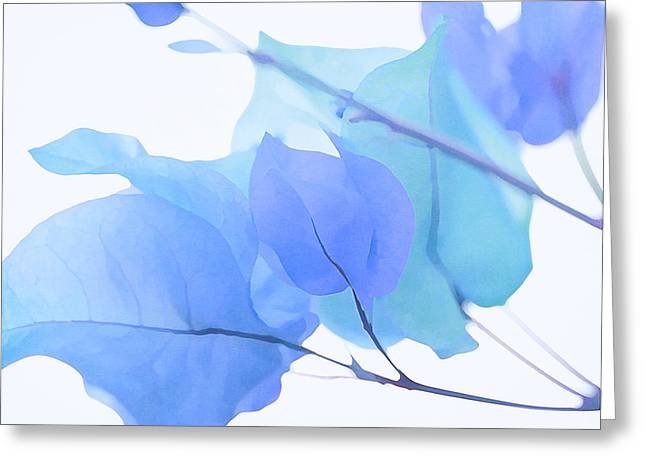 Floral Digital Art Greeting Cards - Blue Bougainvillea Greeting Card by Fraida Gutovich