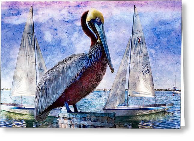 Sailboat Art Greeting Cards - Blue Boy Greeting Card by Debra and Dave Vanderlaan