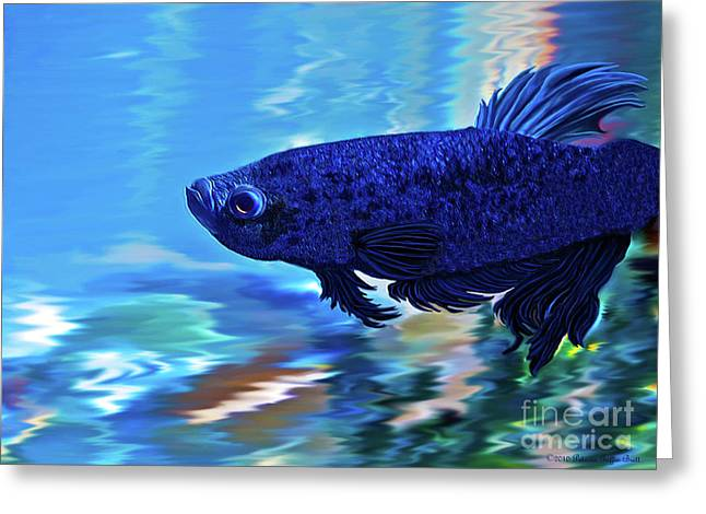 Betta Greeting Cards - Blue Boy Greeting Card by Patricia Griffin Brett