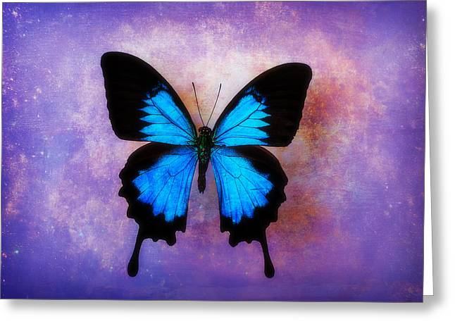 Warm Tones Photographs Greeting Cards - Blue Butterfly Dreams Greeting Card by Garry Gay