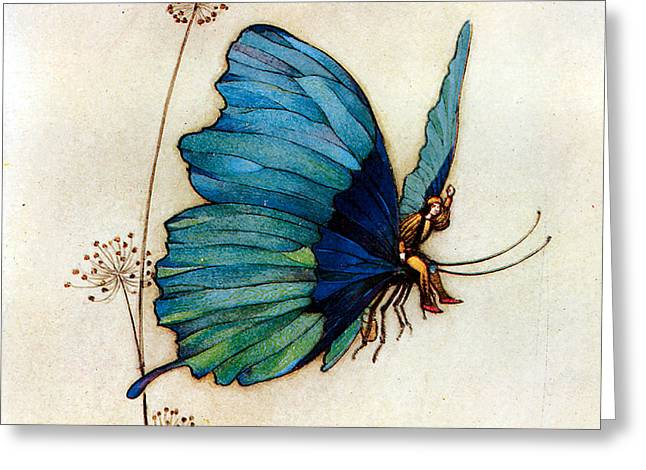 Blue Butterfly II Greeting Card by Warwick Goble