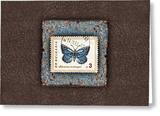Blue Butterfly On Copper Greeting Card by Carol Leigh