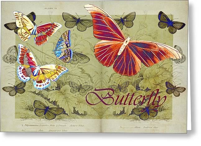 Butterlfy Greeting Cards - Blue Butterfly - Orange on Green - s02a Greeting Card by Variance Collections