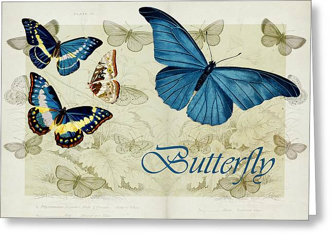 Blue Butterfly - s01a Greeting Card by Variance Collections
