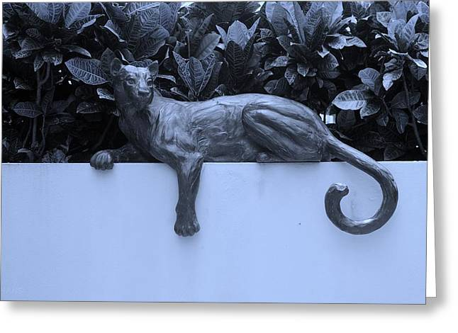 BLUE CAT Greeting Card by ROB HANS