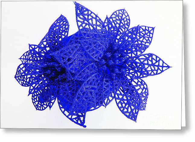 Star Of Bethlehem Greeting Cards - Blue Christmas Holiday poinsettias Greeting Card by Tina M Wenger