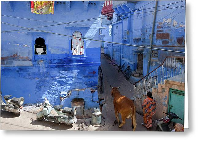 Blue City, Jodhpur, Rajasthan, India Greeting Card by Peter Adams