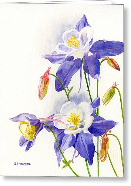 Blue Flowers Greeting Cards - Blue Columbine Blossoms Greeting Card by Sharon Freeman