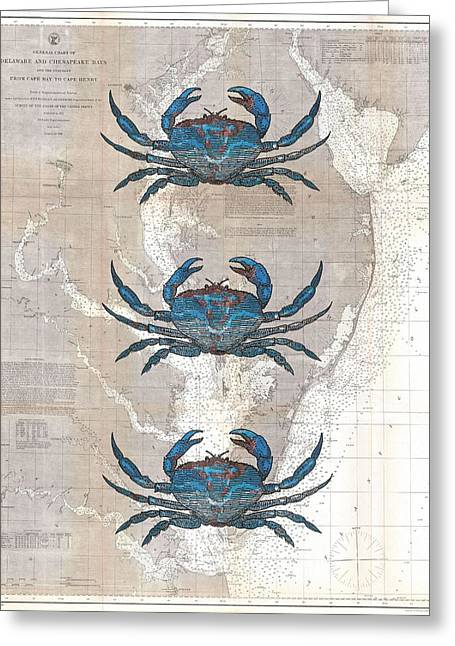 Callinectes Sapidus Greeting Cards - Blue Crabs On 1866 Chesapeake Coastal Map Greeting Card by Suzanne Powers