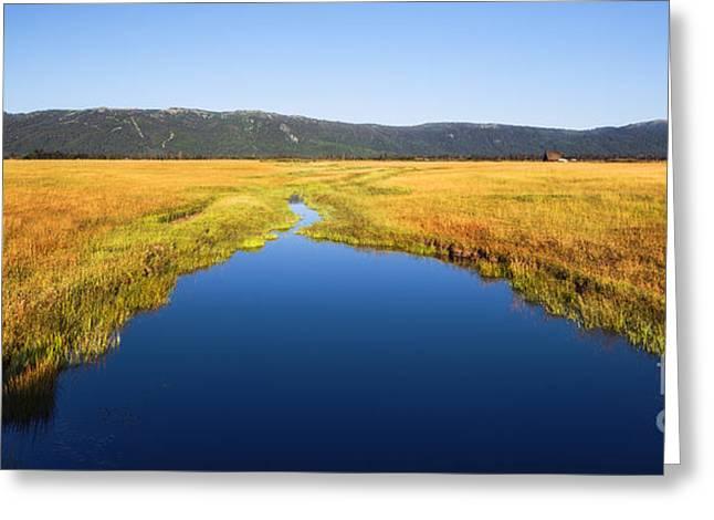 Scenic Idaho Greeting Cards - Blue creek in Cascade Idaho USA Greeting Card by Vishwanath Bhat