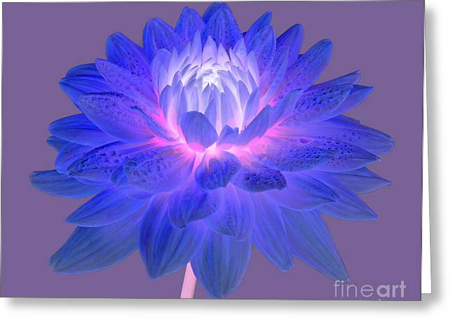Creative Manipulation Greeting Cards - Blue dahlia fantasty Greeting Card by Rosemary Calvert