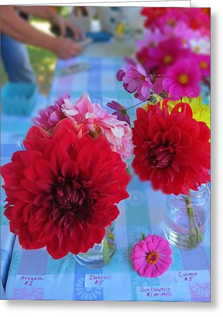 First-rate Greeting Cards - Blue Dahlias Greeting Card by Anne Sterling