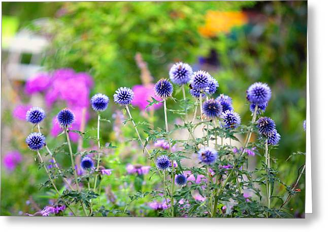 Blue Thistles Greeting Cards - Blue Dance of the Plants Greeting Card by Jenny Rainbow