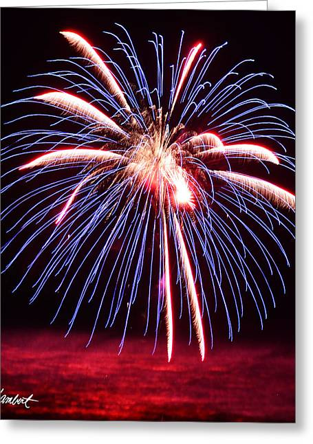 4th July Greeting Cards - Blue Fireworks and Pink Ocean Greeting Card by Lj Lambert