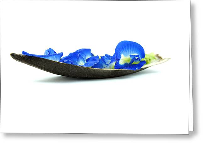 Flowers Photographs Greeting Cards - Blue Flower Boat Greeting Card by Aged Pixel