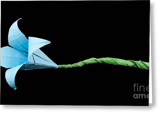 Geometric Design Greeting Cards - Blue Flower origami black isolated. Greeting Card by Deyan Georgiev
