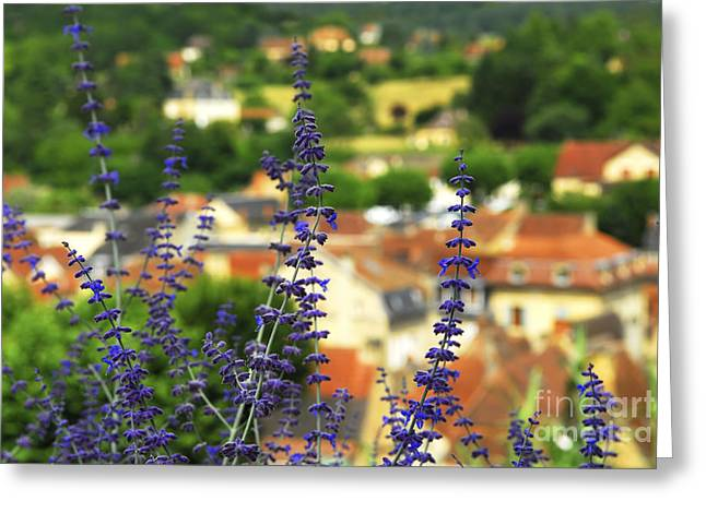 Dordogne Greeting Cards - Blue flowers and rooftops in Sarlat Greeting Card by Elena Elisseeva