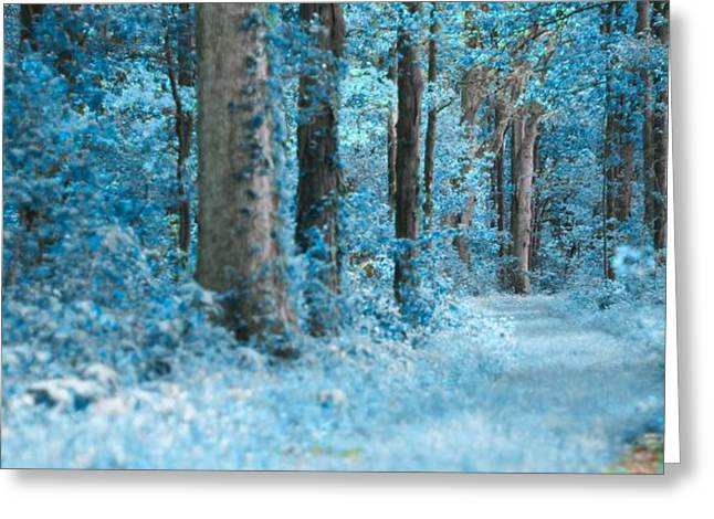 Subtle Colors Photographs Greeting Cards - Blue Forest Greeting Card by Dan Sproul