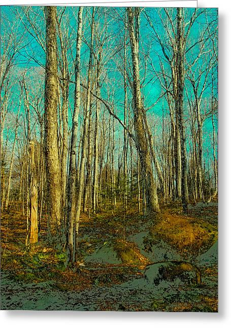 Surreal Landscape Greeting Cards - Blue Forest Greeting Card by David Patterson