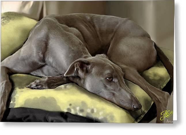 Rescued Greyhound Greeting Cards - Blue Grey Greeting Card by Ari Caer