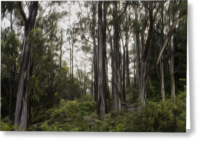 Blue Gum Eucalyptus Forest Greeting Card by Brad Scott