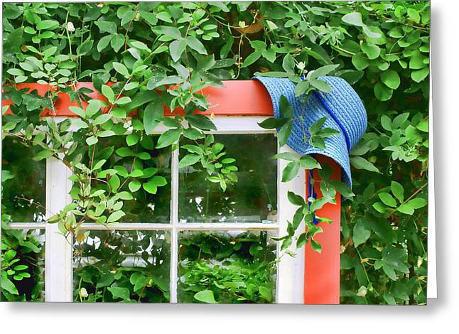 Green Day Greeting Cards - Blue Hat Red Window Greeting Card by Nikolyn McDonald