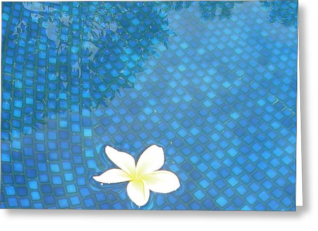 Privilege Greeting Cards - Blue Hawaii Greeting Card by Dona  Dugay