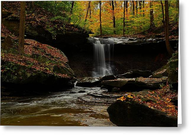 Cvnp Greeting Cards - Blue Hen Falls Greeting Card by Jon Geier