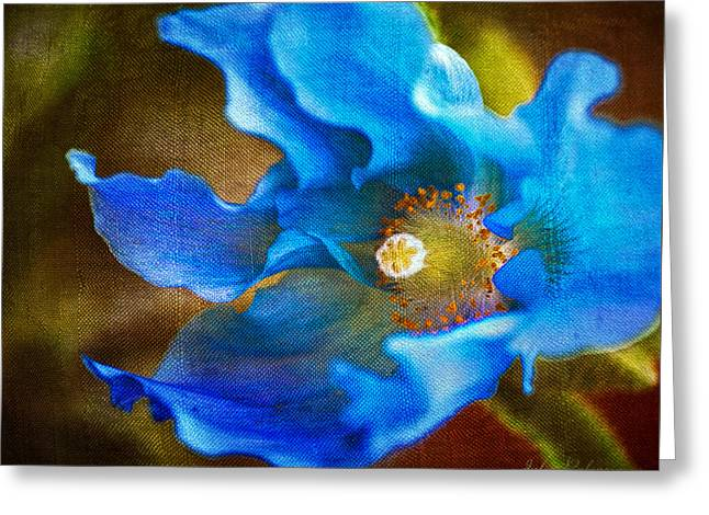 Blue Himalayan Poppy Greeting Card by Julie Palencia