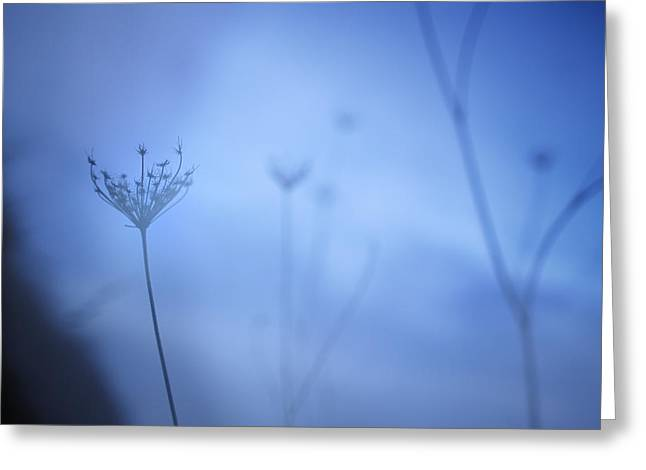 Blue Hour In The Paradise Greeting Card by Guido Montanes Castillo