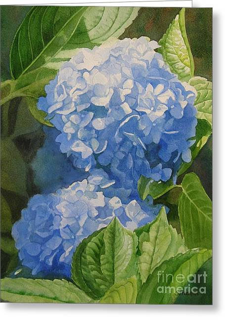Close Up Paintings Greeting Cards - Blue Hydrangea Blossoms Greeting Card by Sharon Freeman
