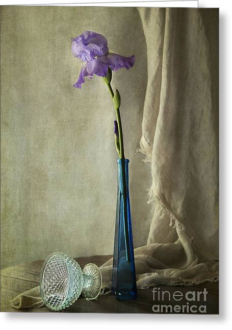 Blue Iris Greeting Card by Elena Nosyreva