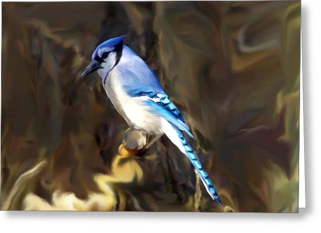 Local Mixed Media Greeting Cards - Blue Jay Greeting Card by Dennis Buckman