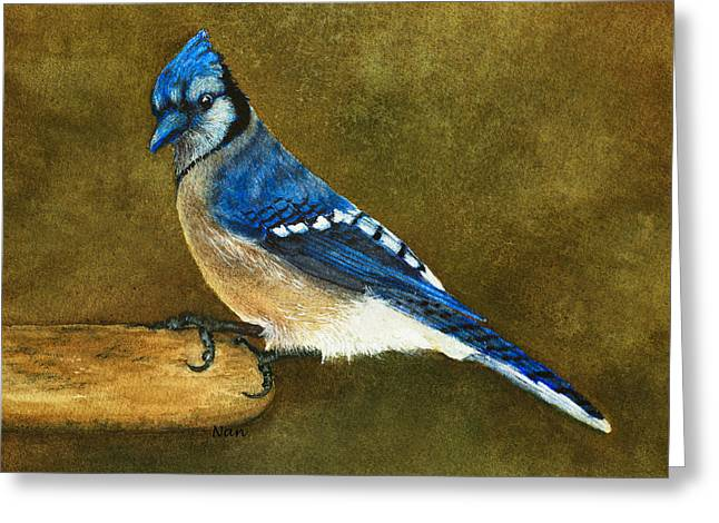 Blue Jay Greeting Card by Nan Wright