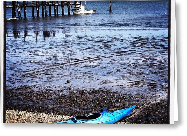 Sausalito Greeting Cards - Blue Kayak of Sausalito Greeting Card by Amy Fearn