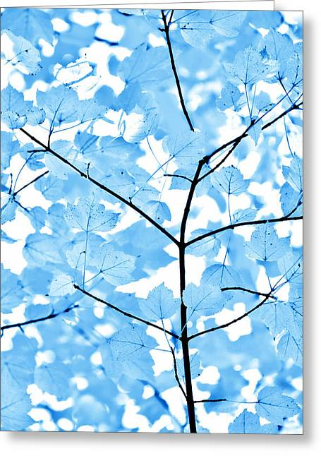 Monochromatic Greeting Cards - Blue Leaves Melody Greeting Card by Jennie Marie Schell