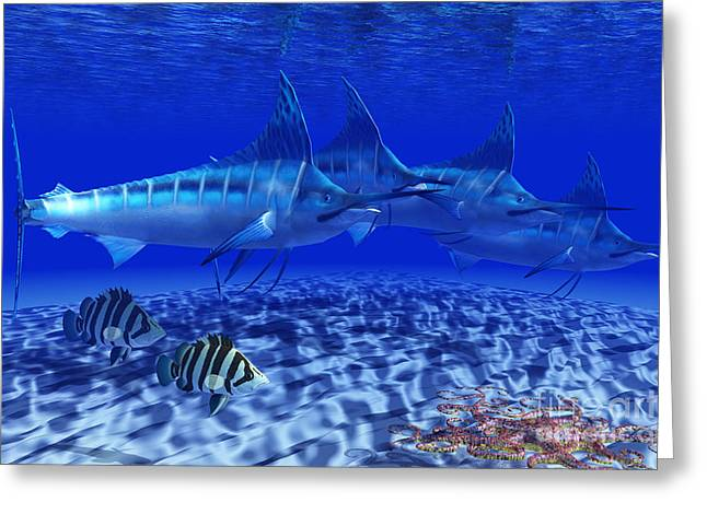Swordfish Digital Art Greeting Cards - Blue Marlin Pack Greeting Card by Corey Ford