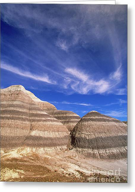 Blue Mesa Petrified Forest National Park Greeting Card by