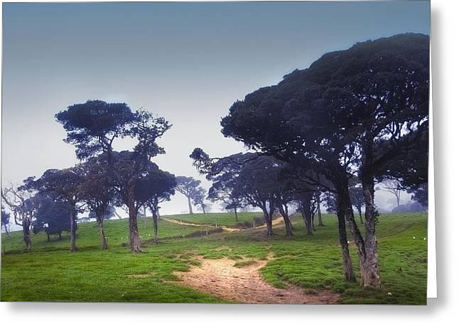 Blue Mist Silence. Sri Lanka Greeting Card by Jenny Rainbow