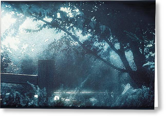 Tori Amos Greeting Cards - Blue Moon Now and Then Greeting Card by Douglas MooreZart