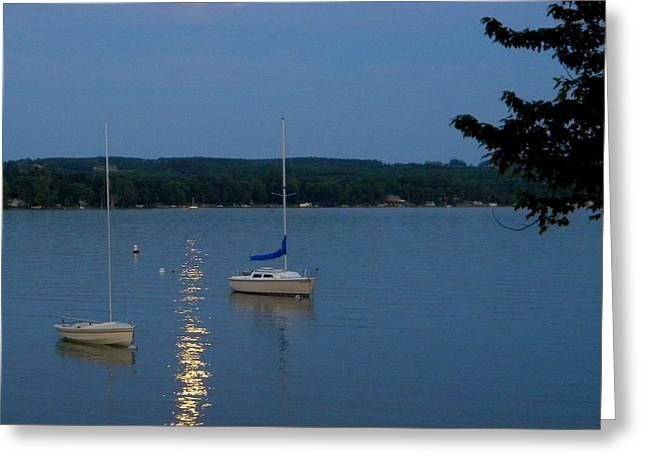 Skaneateles Greeting Cards - Blue moon over Skaneateles Lake Greeting Card by Robert Green